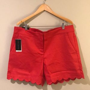 {The Limited} Scalloped Tailored Shorts